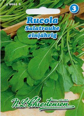 Rukola Eruca Sativa Salatrauke 2.000 Samen  Rucola