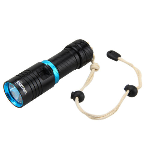10000LM T6 LED Taschenlampe Tauchlampe Scuba Diving Lamp bis 100m 18650 CH Torch