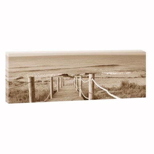Bild Strand Meer Keilrahmen Leinwand  Poster XXL 120 cm*40 cm 471 Steg 2 sepia