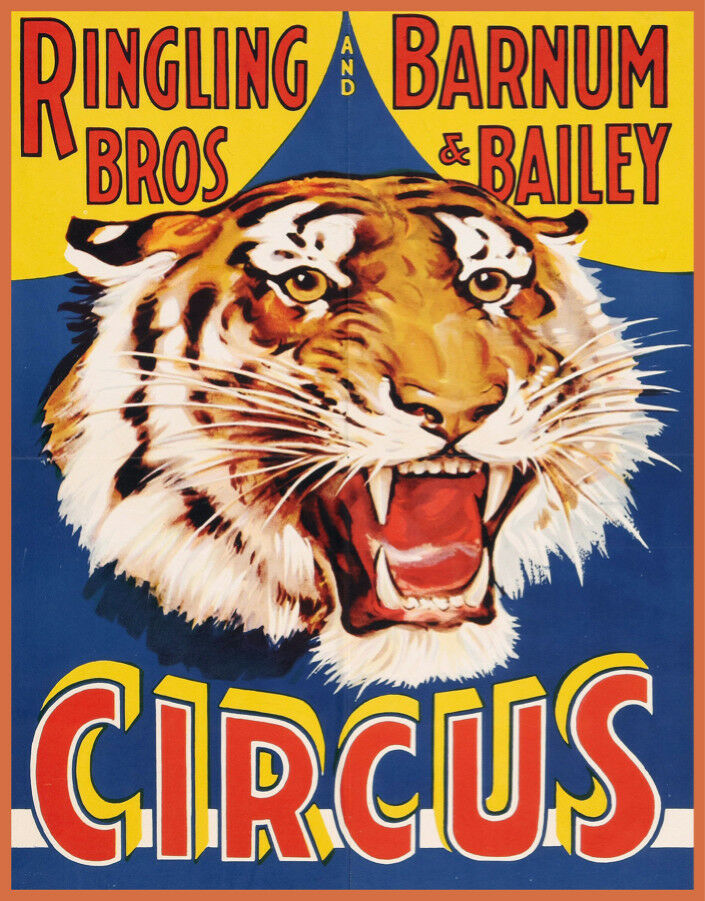 Decor POSTER.Home wall room Art.Interior Design.Circus Ringling.Tiger.6997