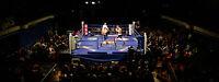 David Lemieux vs Billy Joe Saunders Boxing