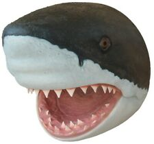 Xentric Guitars SET OF 4 OCEAN ANIMALS Great White Shark 6mm Dome Knob