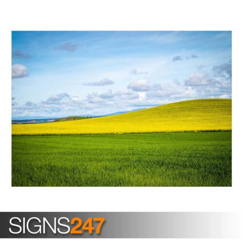 AD822 NATURE POSTER Photo Picture Poster Print Art A0 to A4 YELLOW HILL