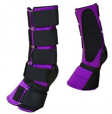 NEW HORSE TACK!! Showman PURPLE Pair of Lined Neoprene Horse Sport Boots