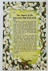 The-Legend-of-the-Dogwood-Vintage-Linen-Postcard-N8