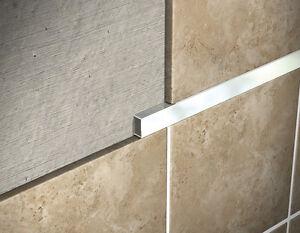 Image Is Loading Genesis Stainless Steel Listello Tile Trim 2 5m