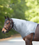 Ekzem  Sommerekzemer Waldhausen Ekzemer Halsteil Bauchgurt  Pony Cob Full