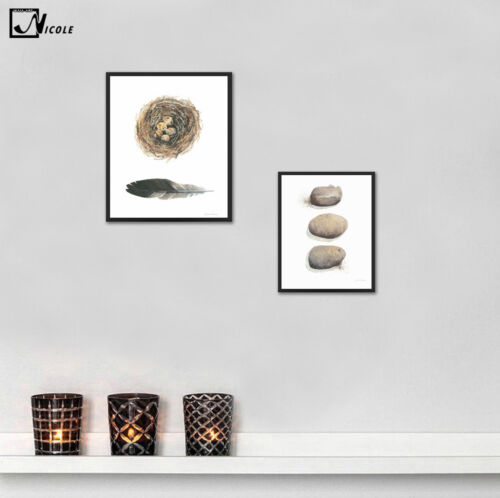 Nordic Art Feather Stone Egg Canvas Poster Minimalism Art Painting Wall Decor 22