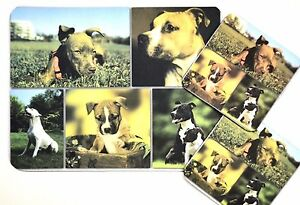 3 pc Set Dog Lovers Mouse Pad 9x7 + 2 Coasters PIT BULL Puppies Little Gifts