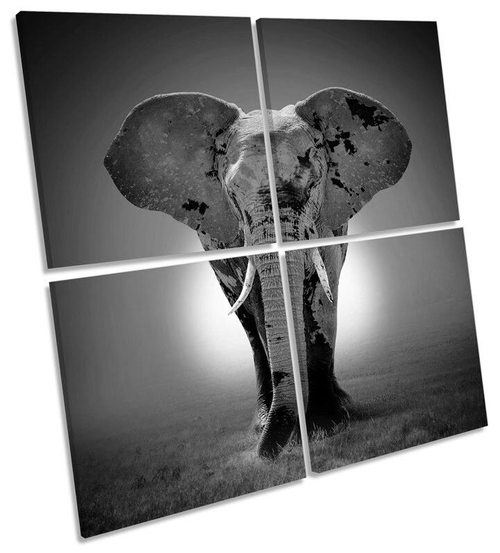 Elephant Sunset B&W MULTI CANVAS WALL ART Square Picture