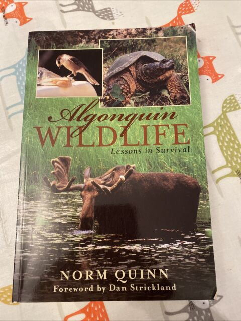 Algonquin Wildlife: Lessons in Survival by Norm Quinn (Paperback, 2002)