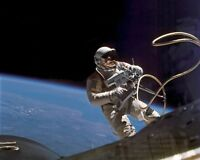 8x10 Photo: Astronaut Ed White In Space Walk, Gemini-titan 4 Flight - 1965