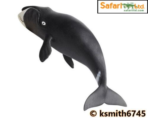 NEW * Safari Bowhead whale solide Jouet en plastique sauvage mer animal marin FIGURE