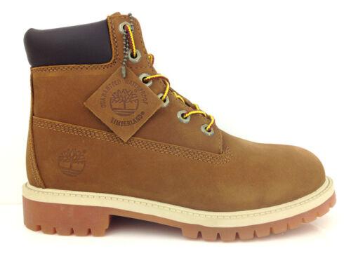 Premium Boot 6 Junior da Boot Timberland 14949 pollici xagYq5CwR