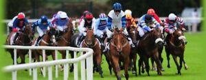 Ultimate-corse-di-cavalli-sistema-14-460-profitti-lo-scorso-anno-10-scommesse-Betfair-Bet365