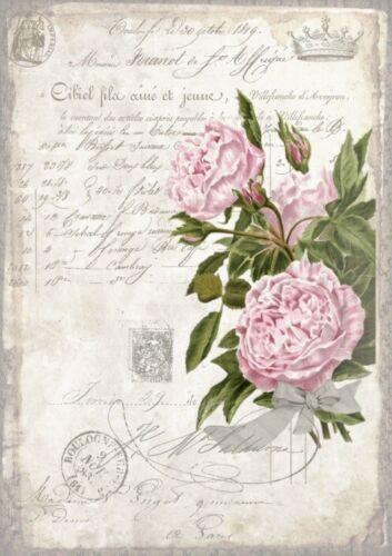 BÜGELBILD-Vintage-Shabby-Nostalgie-French-Rose-3277