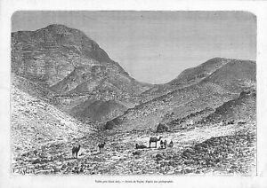 Inventif Palestine Cisjordanie / Vallee Pres Ain Jedy / Gravure Engraving 1882 AgréAble à GoûTer