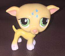 LPS Littlest Pet Shop 2008 Green Eye Greyhound DOG Puppy Toy Figure  5cm