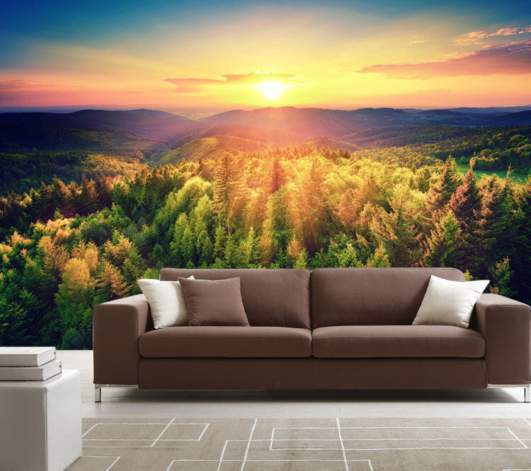 Birds Eye View Forest Sunset Full Wall Mural Photo Wallpaper Print Home 3D Decal