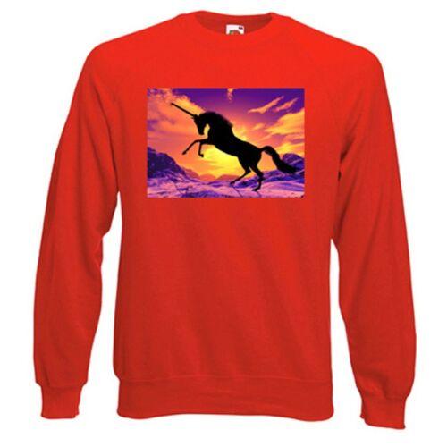 Snow Unicorn Sweatshirt Fantasy Choice of size /& colours.