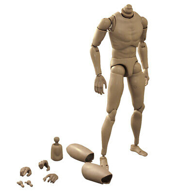 1/6 Scale Action Figure of Narrow Shoulder Naked Male Fit