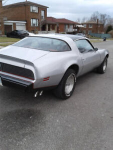 1981 Pontiac Firebird Formula with trans am package from Factory
