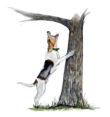 English Hound Dog Sign Print Hunting Gift TYP1 Beagle Car Window Sticker