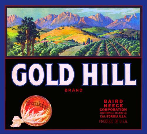 Porterville California Gold Hill Orange Citrus Fruit Crate Label Art Print