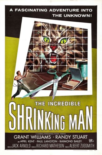 The Incredible Shrinking Man OLD MOVIE POSTER Canvas Box// Photo// Art Print