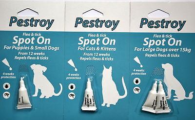 Ospitale Pestroy Pulce & Tick Trattamento Spot On Per Gatti & Gattini, Grandi E Piccoli Cani-mostra Il Titolo Originale Estremamente Efficiente Nel Preservare Il Calore