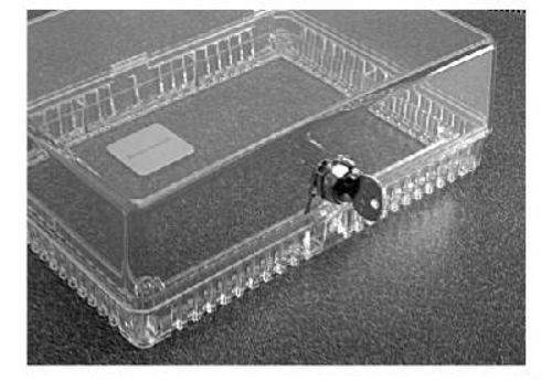BOX OF 6 Honeywell Clear Plastic Thermostat Guard LOCKING Cover 389687 x6
