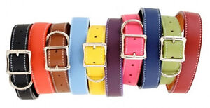 Auburn-Leathercrafters-QUALITY-Leather-Dog-TUSCAN-Collars-12-Colors-10-Sizes