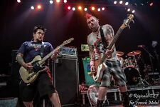 """24/"""" sizes 20/"""" NOFX Punk in Drublic poster wall art home decor photo print 16/"""""""
