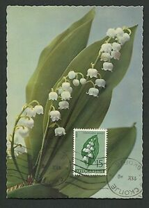 Dynamique Yu Mk 1963 Flore Fleurs Muguet Lily Maximum Carte Maximum Card Mc Cm C9231-afficher Le Titre D'origine Apparence Attractive