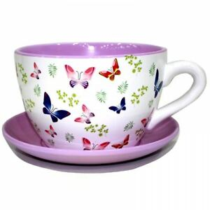 Giant Butterfly Tea Cup And Saucer Planter Jumbo Butterflies Design