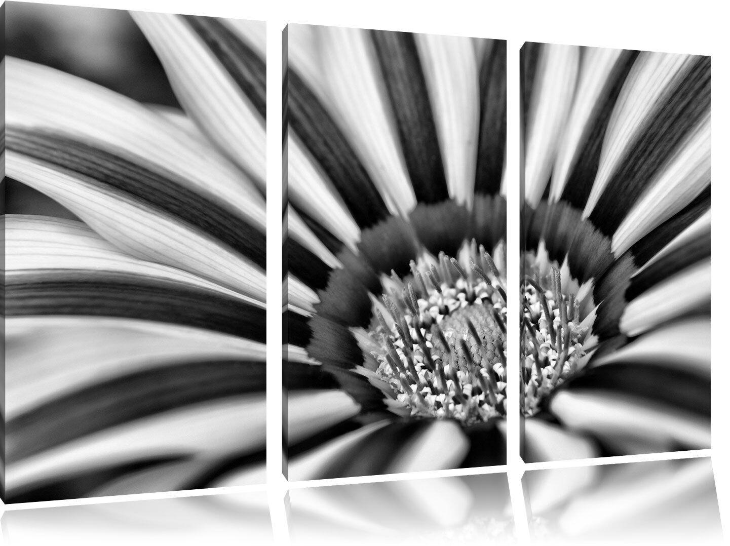 Magnifico Fiore 3-teiler Quadro su Tel
