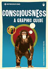 Introducing Consciousness: A Graphic Guide by David Papineau (Paperback, 2010)