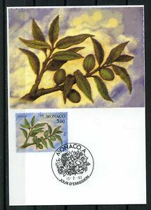 MONACO-1993-CM-1-jour-fleurs-amandier-timbre-1865