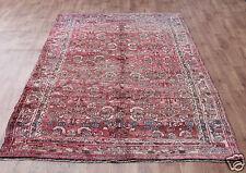 Traditional Vintage Wool Handmade Classic Oriental Area Rug Carpet  X 345 cm 175