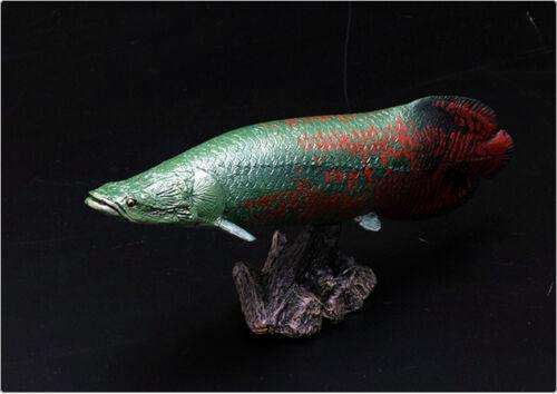 Arapaima Ancient Fish Real Soft Figurine Desktop Model FF-002 Favorite