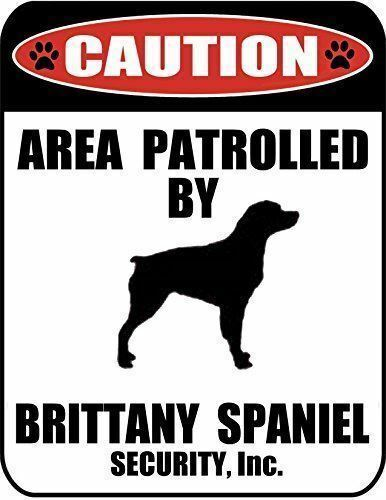 Caution Area Patrolled by a Brittany Spaniel Laminated Dog Sign
