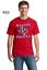 Patriotic Texas Pride Raised In Sticks Flag Mens Short Or Long Sleeve T-Shirt