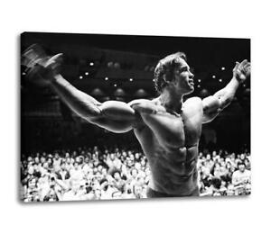 ARNOLD-SCHWARZENEGGER-CANVAS-Bodybuilding-Gym-Weights-Poster-Print-30x20-canvas