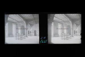 Suisse Lac Leman Foto Stereo Th3L4n22 Placca Da Lente Vintage 1932 Negativo