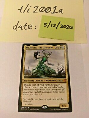 ** Mtg Magic Dominaria ** Muldotha the Gravetide NM!