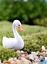 thumbnail 10 - Mini Swan Figurine Fairy Garden Ornaments Crafts Goose Model Miniature Animal