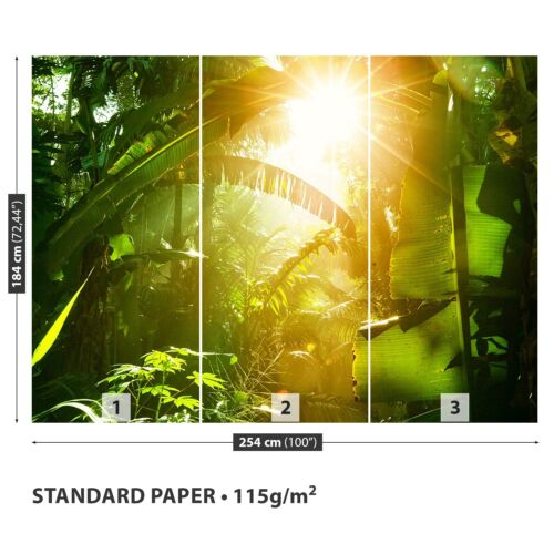 Paper Wall Mural Photo Wallpaper Poster Picture Image Jungle in Vietnam