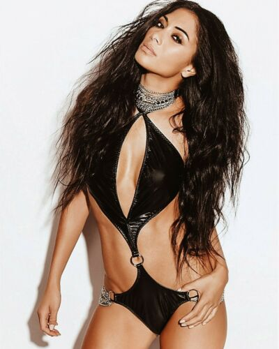 Nicole Scherzinger 8X10 Photo Print