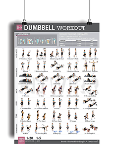 Image Is Loading Dumbbell Exercises Workout Poster Strength Training Chart