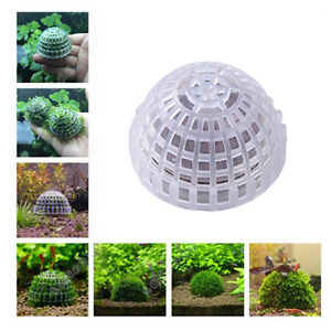 Aquarium decoration diy submerged moss ball for planted for Aquarium decoration diy